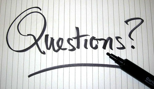 Financial questions to ask management?